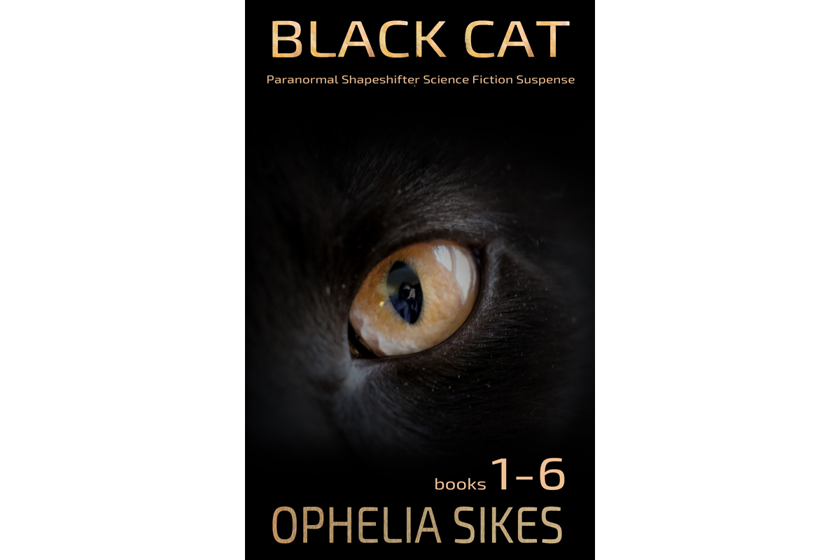 Black Cat Compilation